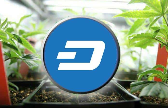 Dash Digital Currency now Offered on <bold>Mercury</bold> Exchange