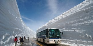 Photo of the Tateyama Snow Wall