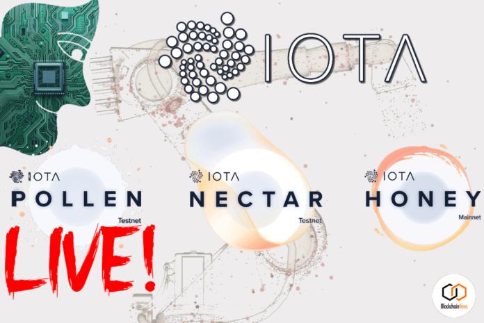 IOTA, Testnet, Pollen, DAG,
